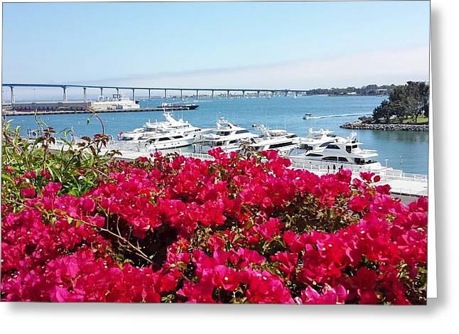 Coronado Bridge Greeting Card by Jasna Gopic