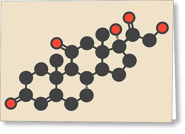 Cortisone Stress Hormone Molecule Greeting Card by Molekuul