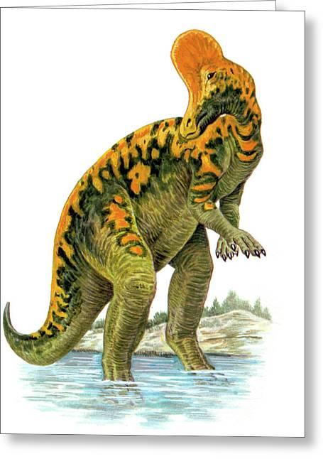 Corythosaurus Dinosaur Greeting Card by Deagostini/uig