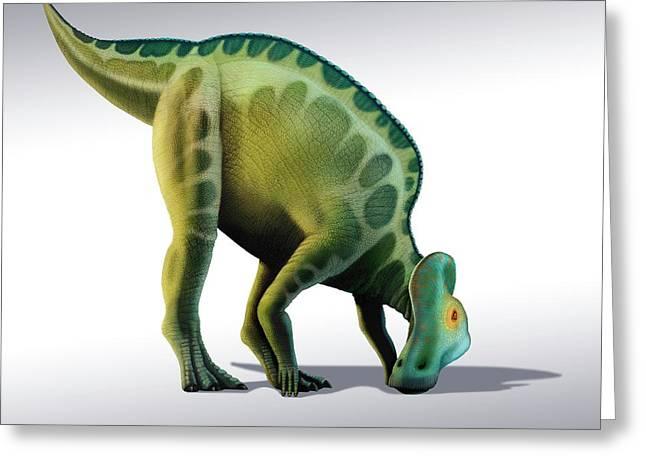 Corythosaurus Dinosaur Greeting Card