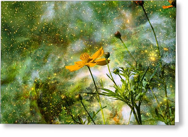 Cosmos Sharing It's Beauty Greeting Card by J Larry Walker