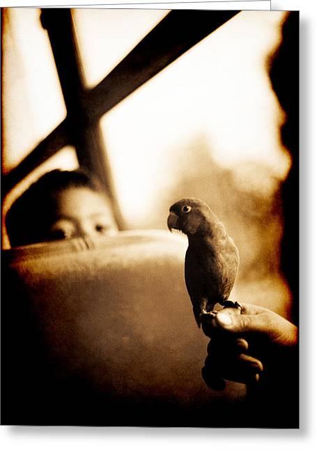 Costa Rican Bird Boy Greeting Card