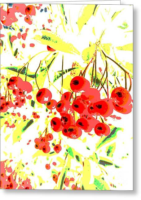 Greeting Card featuring the photograph Cotoneaster by Barbara Moignard