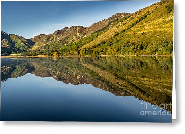 Cottage By The Lake Greeting Card by Adrian Evans