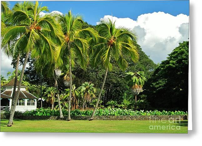 Cottage Of Kamehameha V Greeting Card