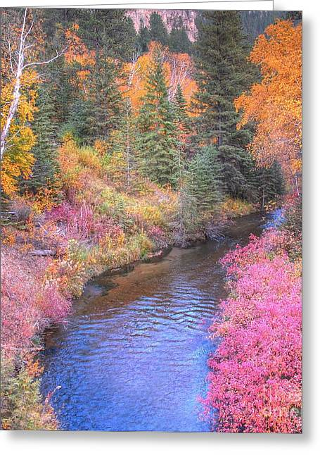 Cotton Candy Creek Greeting Card