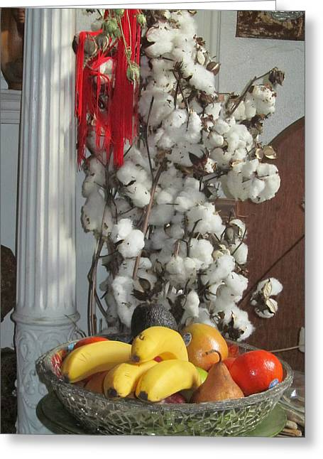 Cotton Greeting Card by Stephanie Francis