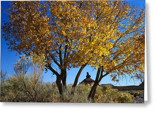 Cottonwood And Nipple Butte Greeting Card