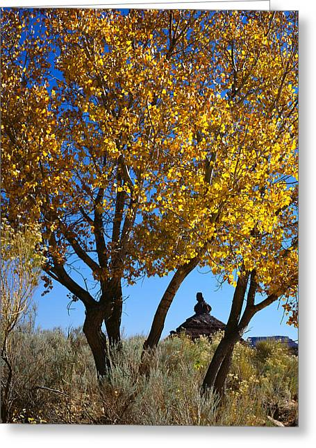 Cottonwood And Nipple Butte-v Greeting Card