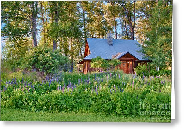 Cottonwood Cottage Spring 2014 Photographs Taken By Omaste Witko Greeting Card