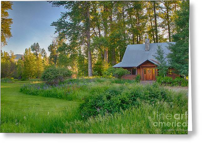 Cottonwood Cottage With Spring Lupine Greeting Card