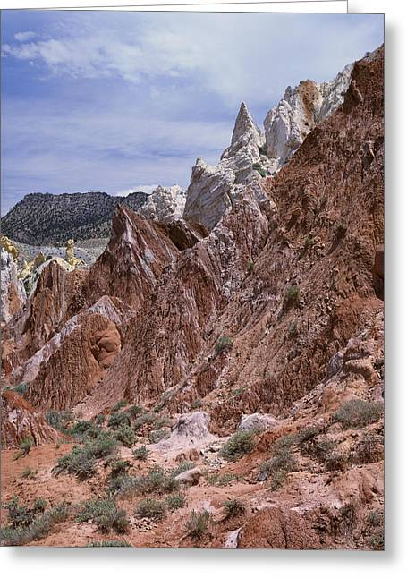Cottonwood Spires 1-v Greeting Card