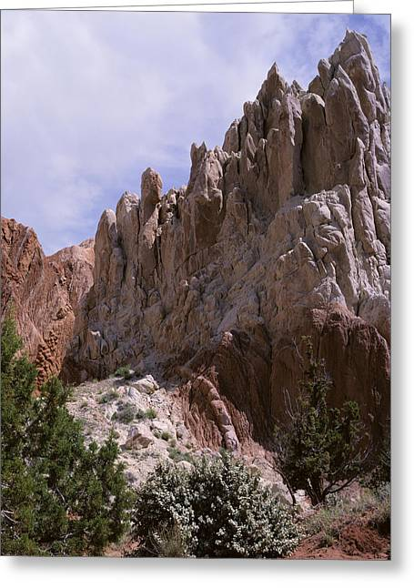 Cottonwood Spires 2-v Greeting Card