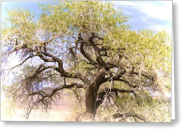 Cottonwood Tree Digital Painting Greeting Card by Dianne Phelps