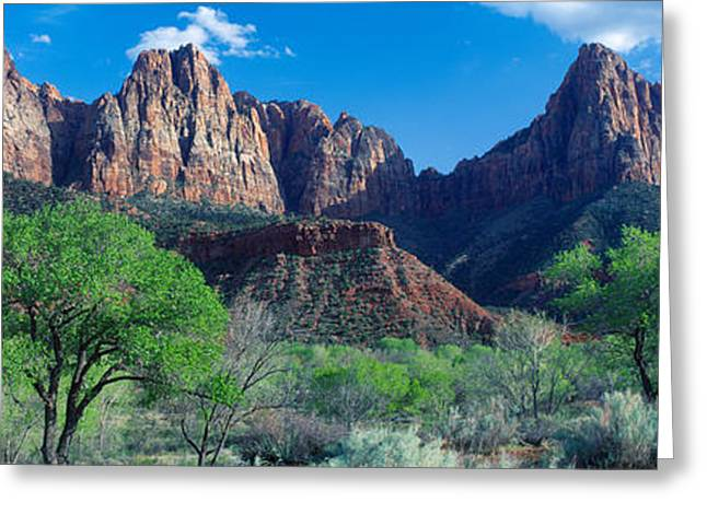 Cottonwood Trees And The Watchman, Zion Greeting Card by Panoramic Images