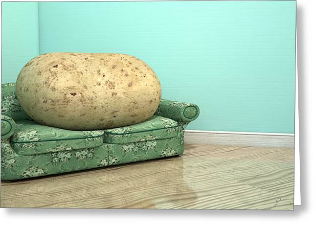Couch Potato On Old Sofa Greeting Card by Allan Swart
