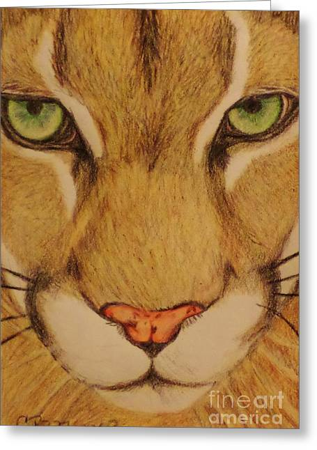 Cougar Greeting Card by Christy Saunders Church