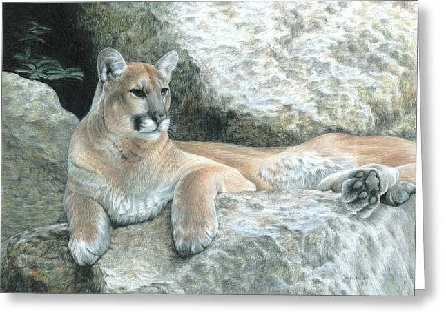 Cougar Haven Greeting Card