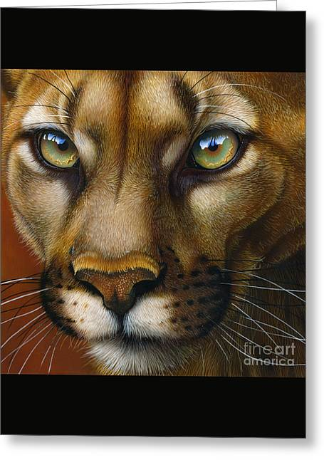 Cougar October 2011 Greeting Card by Jurek Zamoyski