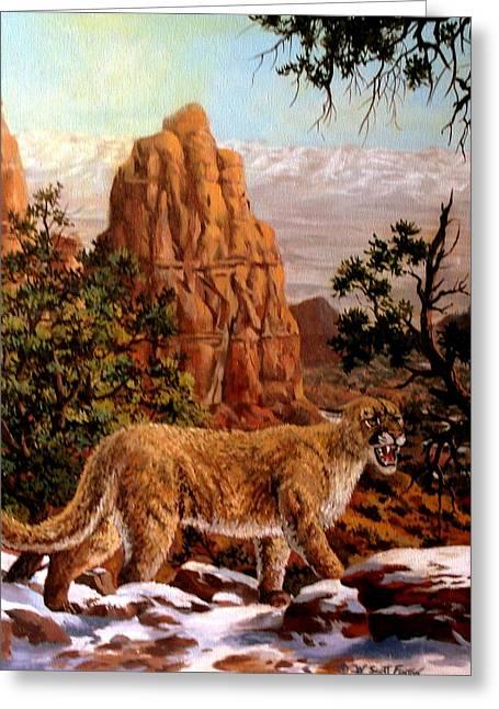 Cougar Greeting Card by W  Scott Fenton
