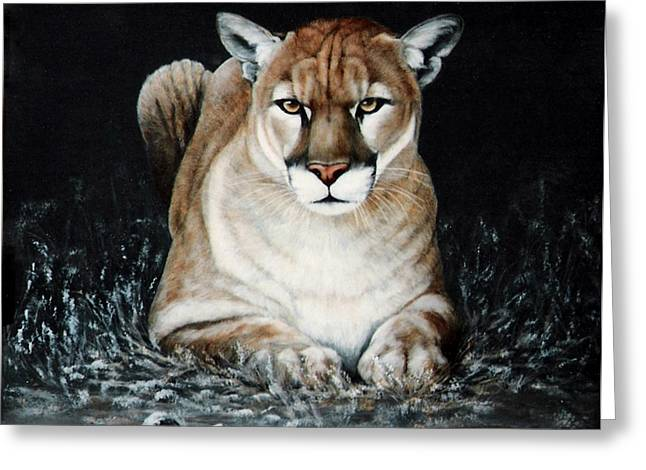 Greeting Card featuring the painting Cougar Waiting by DiDi Higginbotham