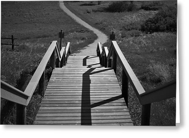 Coulee Stairs Greeting Card by Donald S Hall