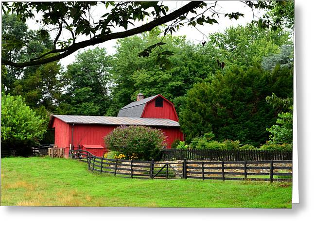 Greeting Card featuring the photograph Country Barn Vineyard by Cathy Shiflett