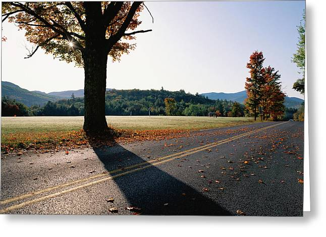 Country Highway With Fall Trees Greeting Card by Panoramic Images
