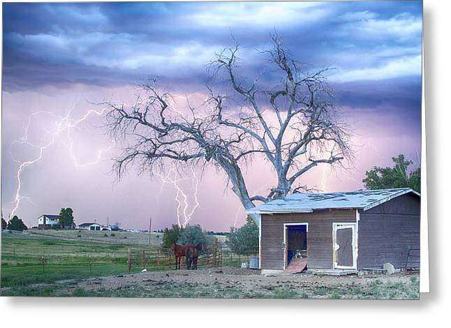 Country Horses Riders On The Storm Greeting Card