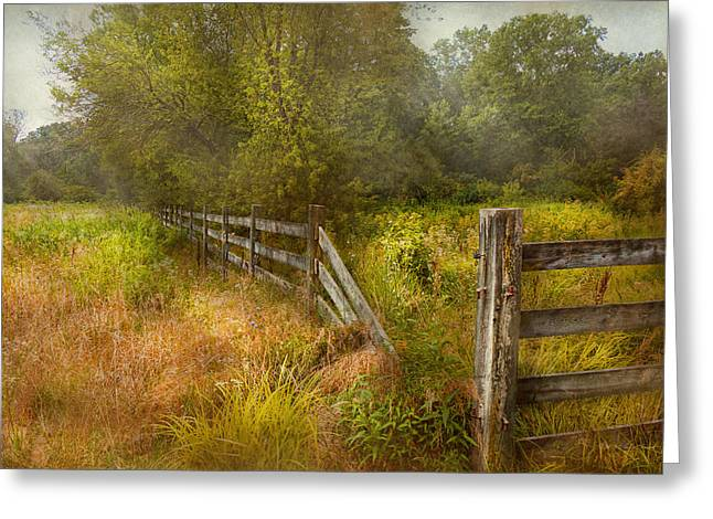 Country - Landscape - Lazy Meadows Greeting Card by Mike Savad