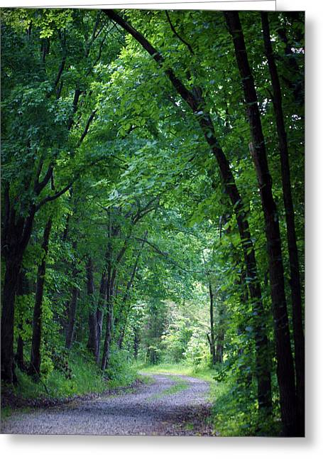 Country Lane Greeting Card by Cricket Hackmann