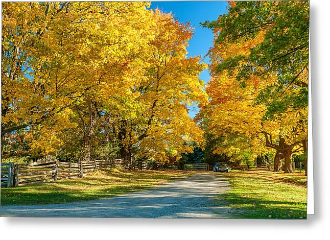 Country Lane Greeting Card by Steve Harrington