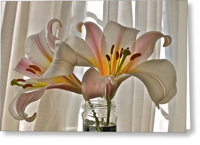 Country Lilies Greeting Card
