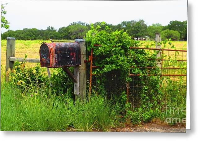 Country Mailbox Greeting Card by Lne Kirkes