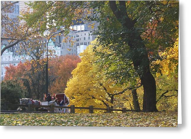 Greeting Card featuring the photograph Country Ride In The City by Barbara McDevitt