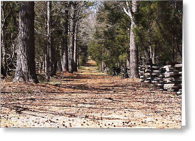 Country Road Greeting Card by Arthur Warlick