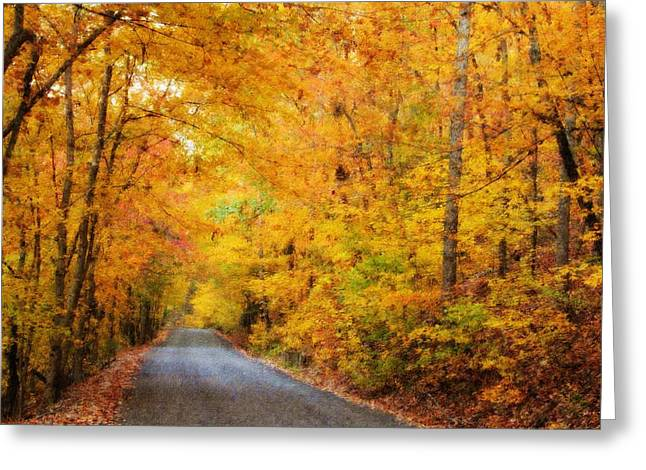 Country Road In Fall Greeting Card