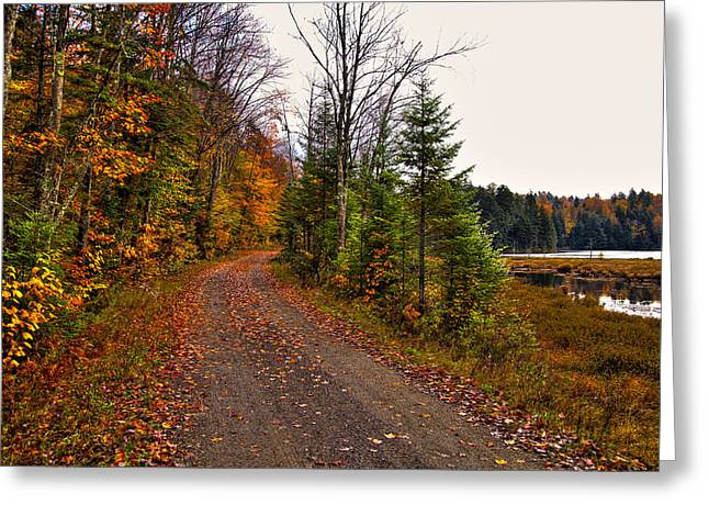 Country Road In The Fall Greeting Card