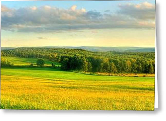 Country Road Panorama Greeting Card by Ed Roberts