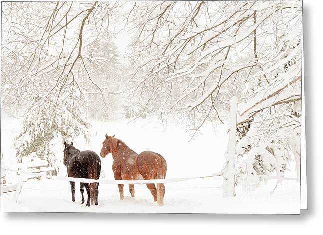 Country Snow Greeting Card by Cheryl Baxter