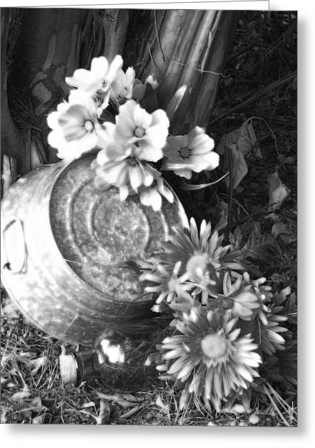 Country Summer - Bw 03 Greeting Card