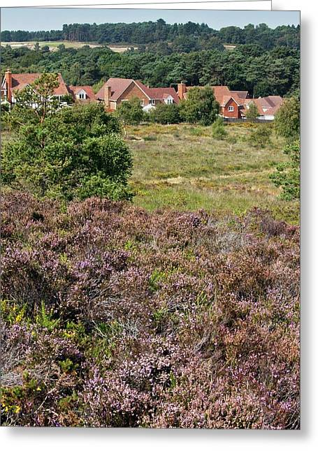 Countryside Housing Development Greeting Card by Bob Gibbons