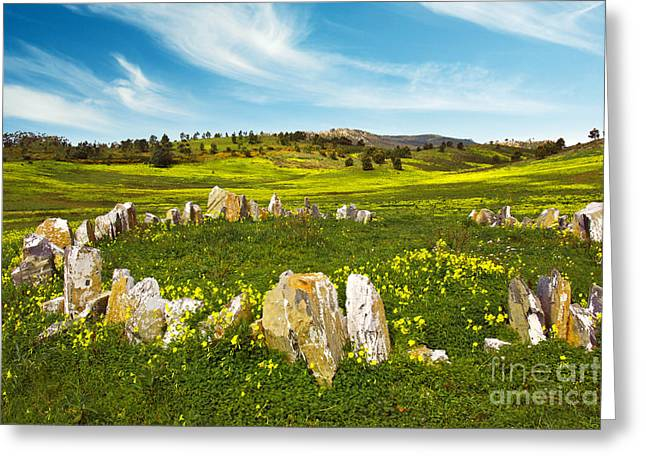 Countryside With Stones Greeting Card by Carlos Caetano