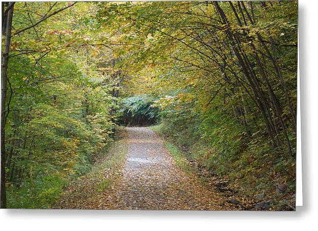 County Path Greeting Card by Catherine Gagne