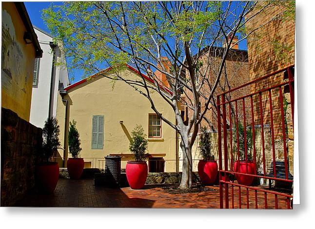 Courtyard Greeting Card by Michele Wright