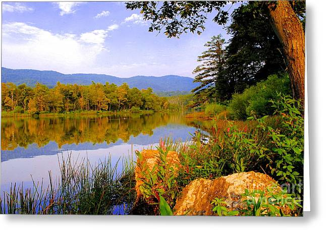 Cove Lake State Park  Greeting Card