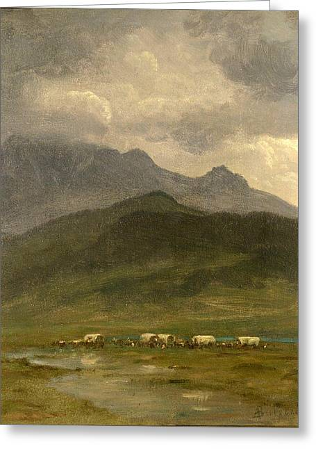 Covered Wagons Greeting Card by Albert Bierstadt