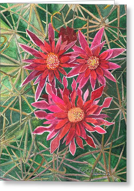 Coville Barrel Blossoms Greeting Card