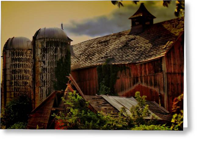 Cow Barn Greeting Card