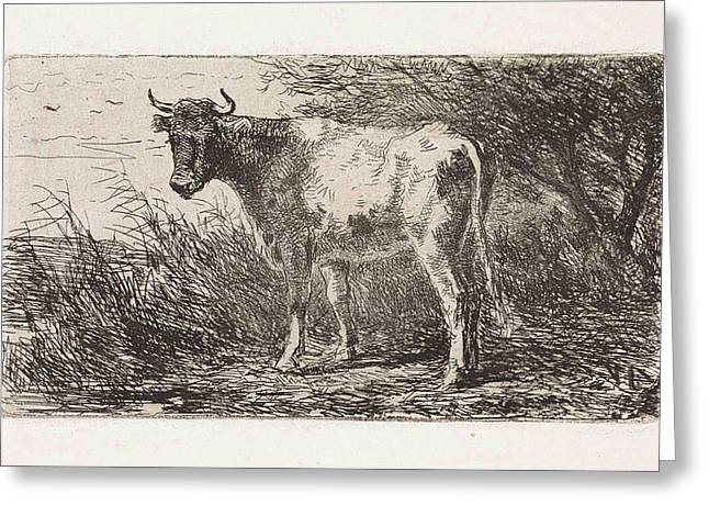 Cow On The Bank Of A River, Jan Vrolijk Greeting Card by Jan Vrolijk